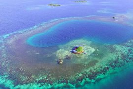 Bird Island Belice