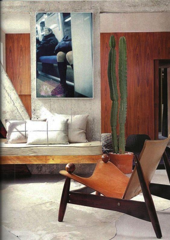 Cactus en la decoración de interiores