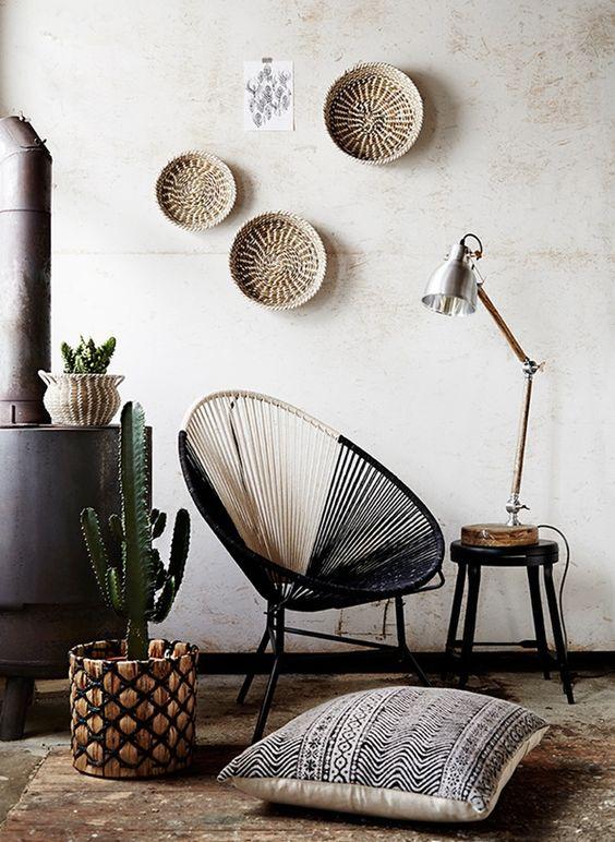 Cactus y la decoración