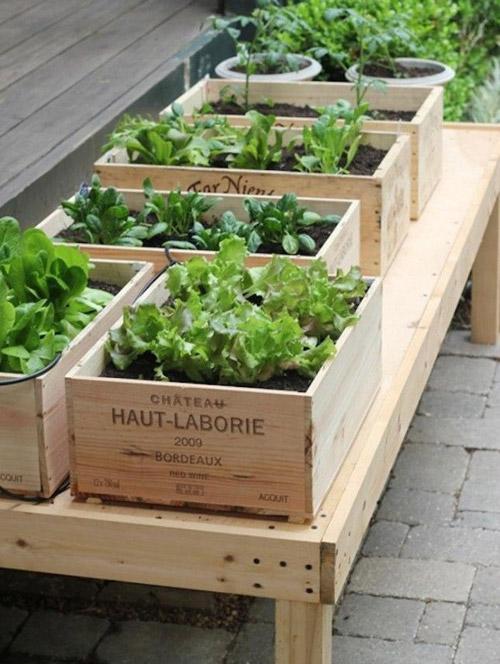 Cajas de madera para el jardín