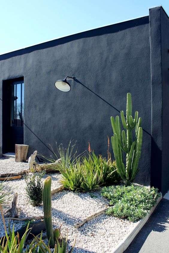 piedras y cactus para el jardn