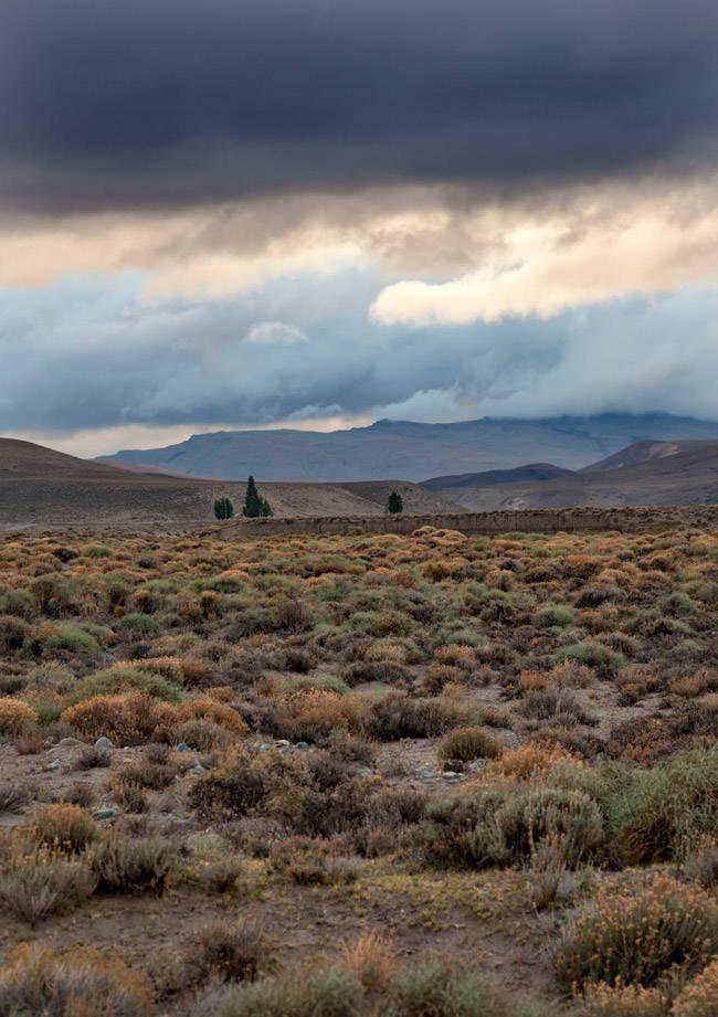Granja El Capricho Patagonia