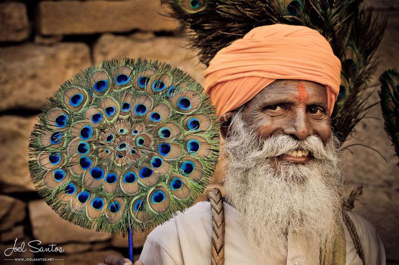 Plumas de pavo real, Jaisalmer, India.