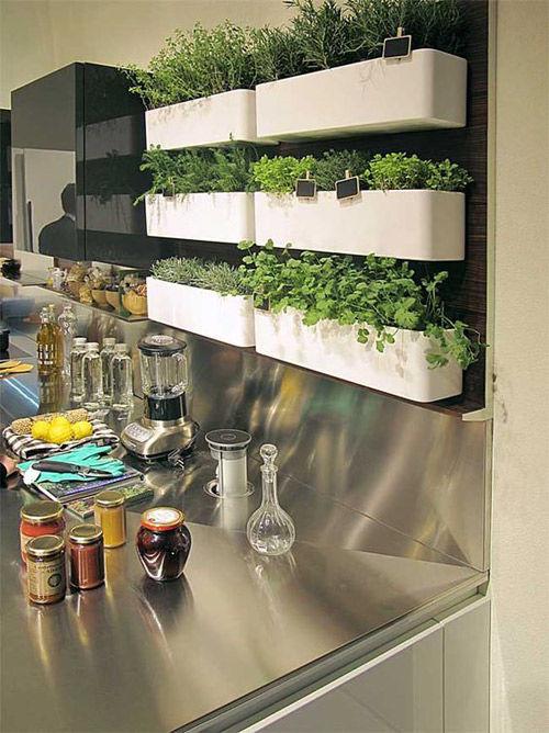 balda en la cocina para hierbas aromáticas