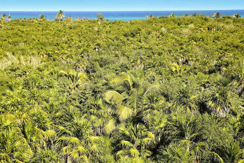 Tulúm, en la Riviera Maya