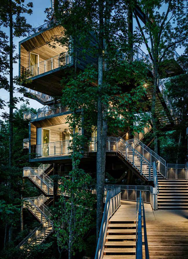 Casa en un arbol de varios pisos