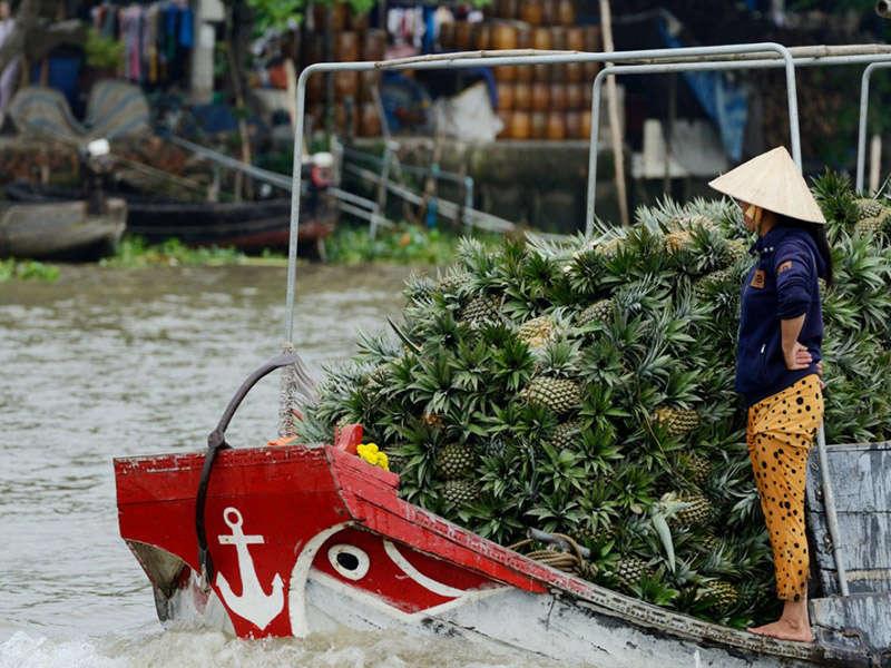 Transporte de mercancias en el río Mekong, Vietnam
