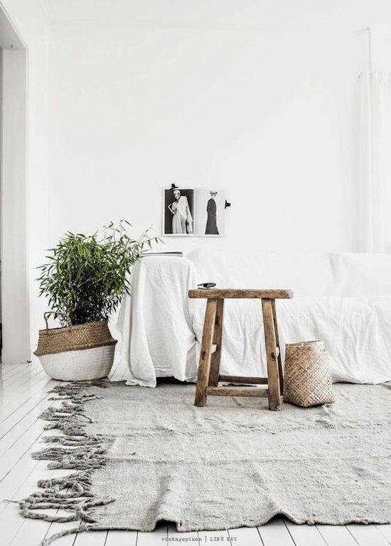Plantas en las casas escandinavas