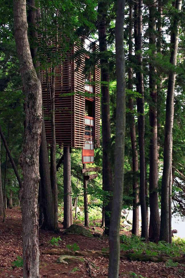 Casa de madera en un arbol