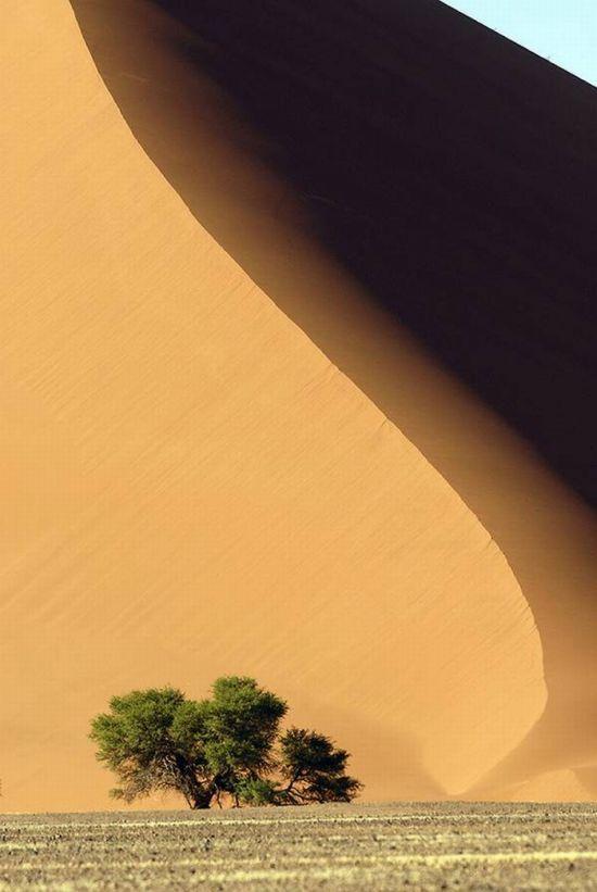 Dunas en el desierto de Namibia