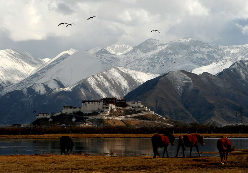 Vistas del Palacio de Potala con el Himalaya al fondo
