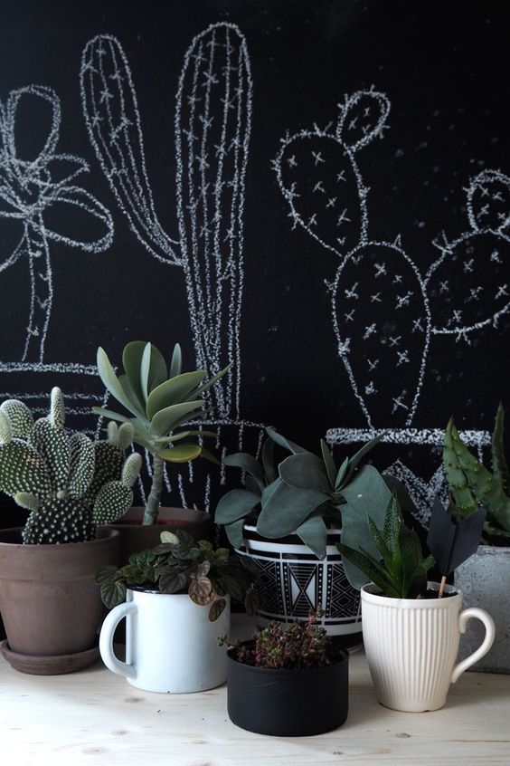 Decoración con cactus en interiores