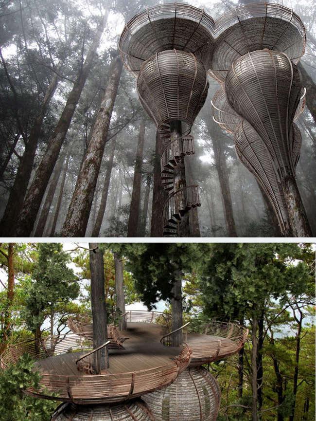 Diseños de casas en los arboles