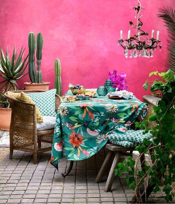 Cactus y suculentas en una cas de estilo tropical