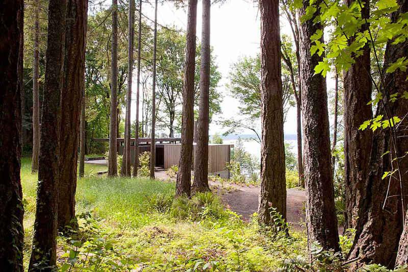 Un refugio en un bosque