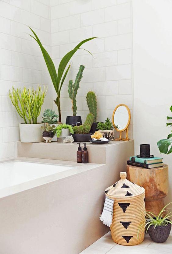 Decoración del baño con cactus