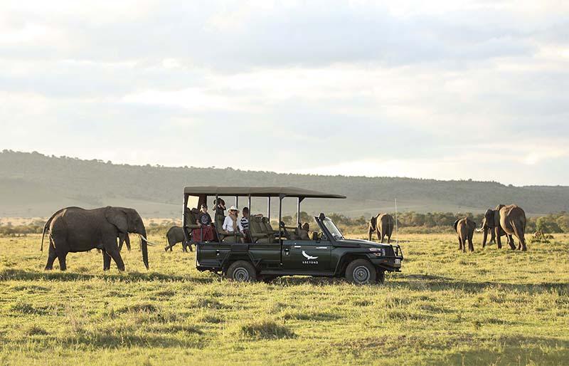 Naturaleza y animales en Kenia