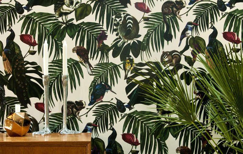 Animales en los motivos de los papeles pintados tropicales