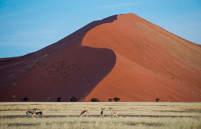 las dunas rojas de Sossusvlei en Namibia