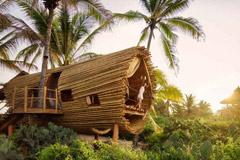Eco resorts