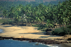 Goa en la India