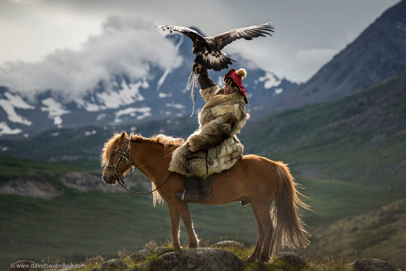 Cazador mongol