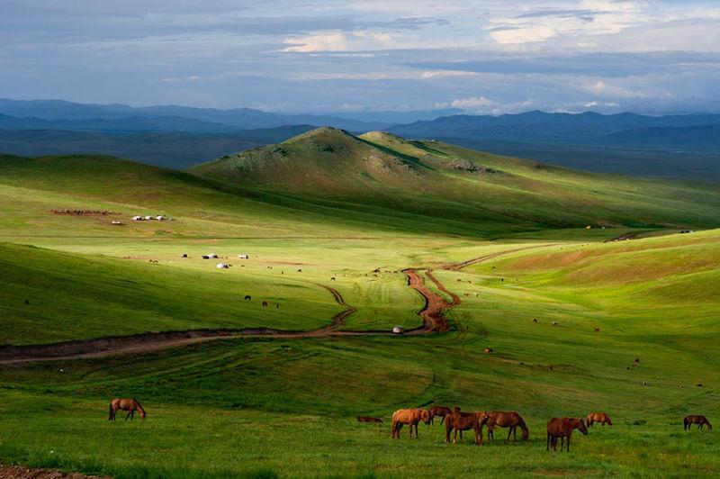 Estepas en Mongolia