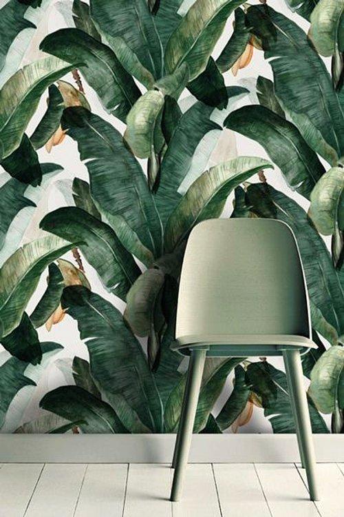 Color y alegría en el papel pintado de inspiración tropical