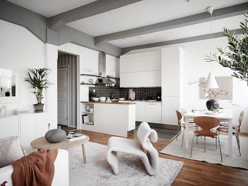salón comedor cocina en un apartamento pequeño