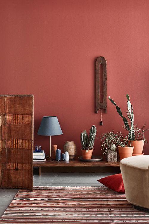 pintar las paredes de color terracota para conseguir cálidos ambientes