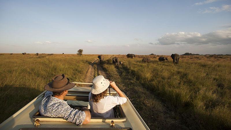 Cuándo ir a Serengeti