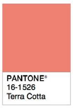color terracota para pintar las paredes de casa