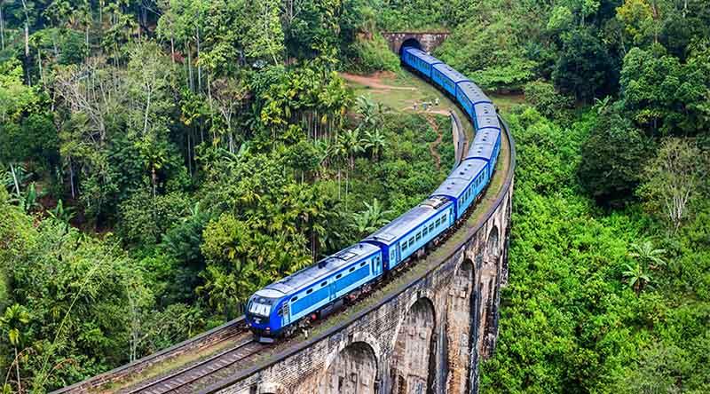 plantaciones de te en el tren de Kandy a Ella
