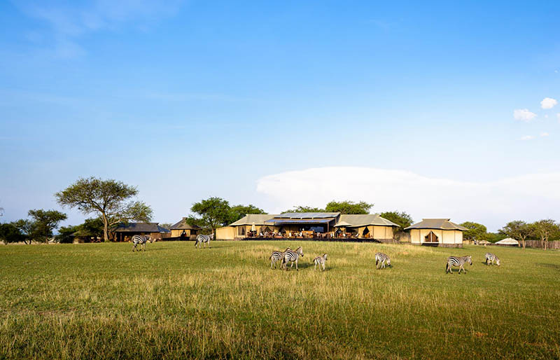 Resorts de lujo en un safari en Tanzania